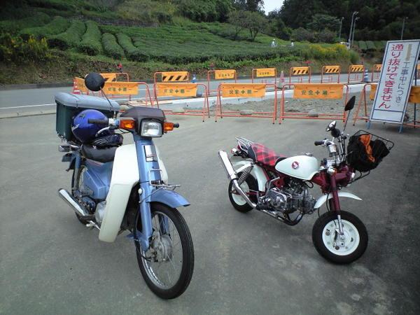 20101024_ca390009