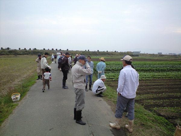 20101107_ca390007