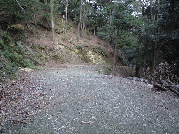 20101226_ca390023